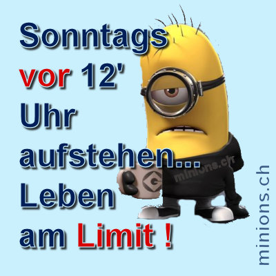 minions-leben-am-limit