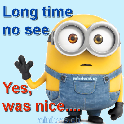 minions-ch-long-time-no-see